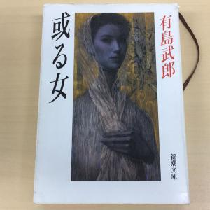 有島武郎『或る女』感想|妖艶で魔性。早月葉子の激情の人生に心奪われる純文学の大傑作