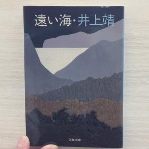 井上靖『遠い海』感想とあらすじ|「思慕」VS「嫉妬」が織りなす会話劇。やがて心がじんわりする四角関係