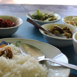 【ミャンマー】バガンで変な虫に刺された。パゴダ巡りの続き