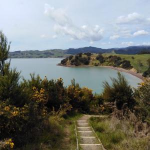 ニュージーランド オークランドでハイキング Waitawa regional park \(^o^)/