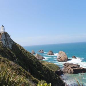 【カトリンズコースト】美しい灯台!Nugget Point Lighthouse