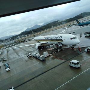 【福岡→オークランド(ニュージーランド)便】シンガポール航空をレビューします(^^♪ チャンギ空港ターミナル1「Plaza Premium Lounge」で7時間の待ち時間も退屈せずに過ごせました(^^♪