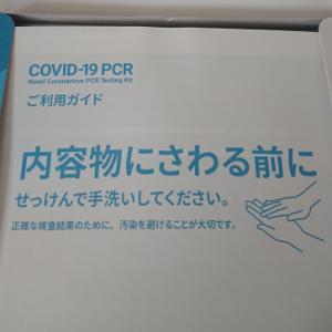 PCR検査やってみた!