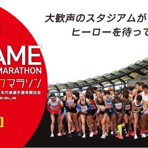 丸亀ハーフマラソン口コミガイド 箱根ランナーも走る高速コース
