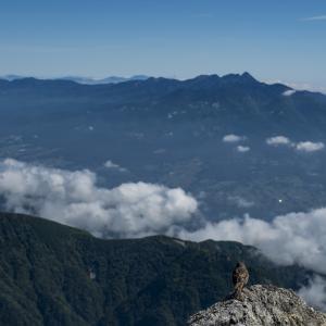 【今日の一コマ】イワヒバリと八ヶ岳連峰