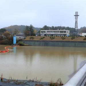亀山ダムウォッチング(オータム)2019年