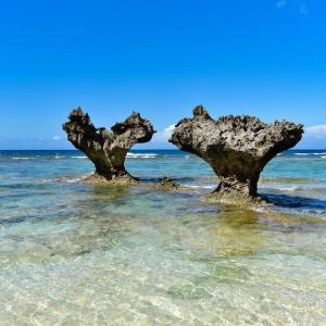 【面白い話】沖縄好きな私が沖縄から逃げ帰った時の話