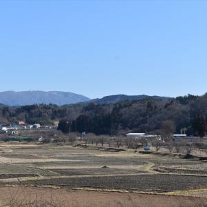 【桜-常葉-07】大滝根川の桜並木(常葉町)