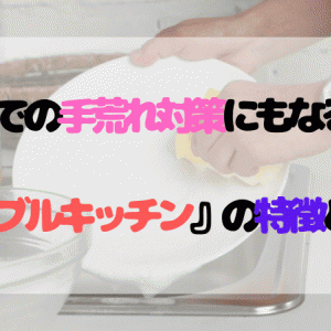 洗い物での手荒れ対策にもなる水栓『ミラブルキッチン』の特徴と効果