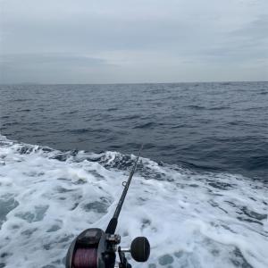 アカムツ釣りに行ったのになぁ
