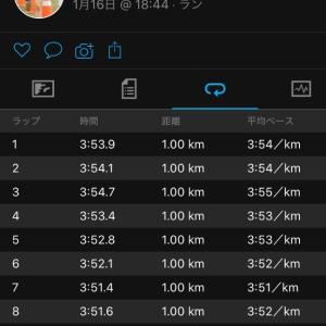 Mペース走15km
