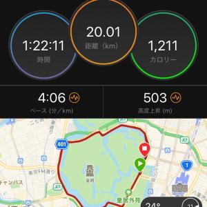 ペース走20km