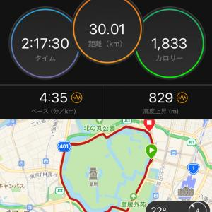ジョグ30km