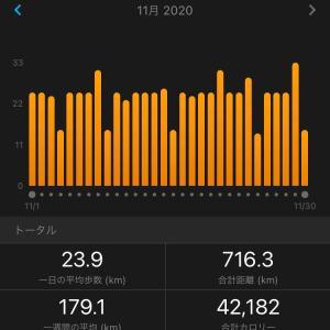 ジョグ10km 強化月間振り返り
