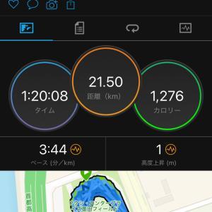 ペース走21.1km