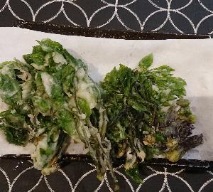 お庭の山菜ー②