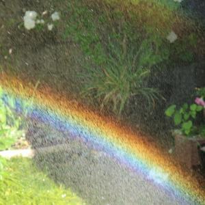 久し振りのちっちゃい虹です。