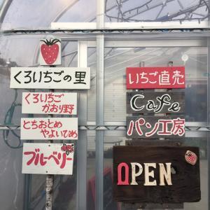 いちごの美味しい季節に絶対行きたい!くろいちごCafe