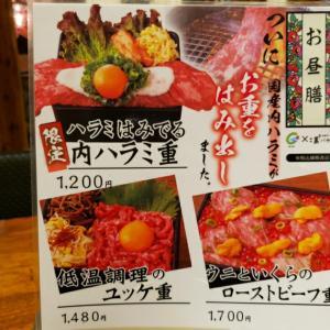 【DDホールディングス株主優待到着】五島牛一頭買いの焼肉屋で食べてきました!
