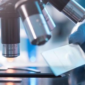 人工子宮での妊娠、出産はすでに起こっている……遺伝工学研究者が「大学は役に立たない」に反論する理由