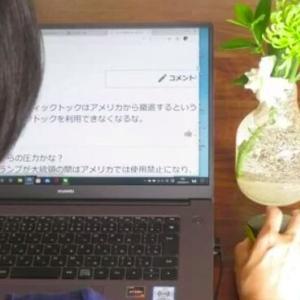ネット暴力に日本が対策、中国のネットユーザーが賛同―中国紙