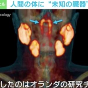 """人間の体に""""未知の臓器""""発見、なぜ今? 研究チームの医師を直撃 臓器の""""定義""""によって今後新たに見つかる可能性も?"""