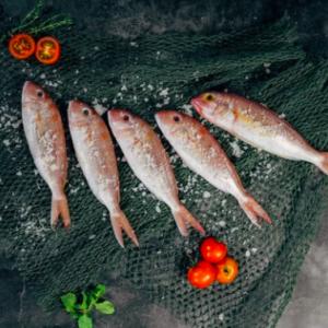 中国人は海鮮を食べてはいけないのか―中国メディア