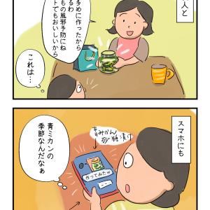 青ミカンの季節(過ぎつつあるけど)