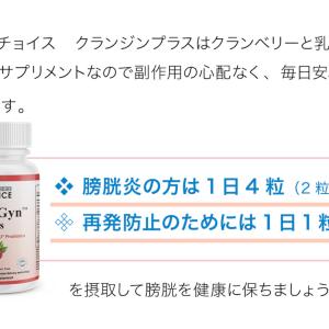 【膀胱炎対策に!膀胱炎予防にクランジンの5つの乳酸菌とは?】