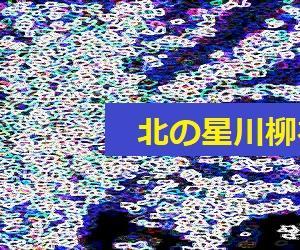川柳北の星特集:3
