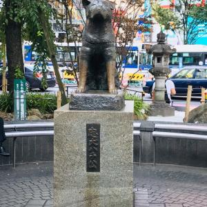 眠らない街東京からの道場練習
