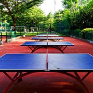 11/13~卓球男子W杯(ワールドカップ)2020 試合結果、組み合わせ、出場選手 張本智和、丹羽孝希が参戦予定