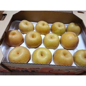 コストコ☆8月17日購入分(やっぱり美味しいグレープトマト)
