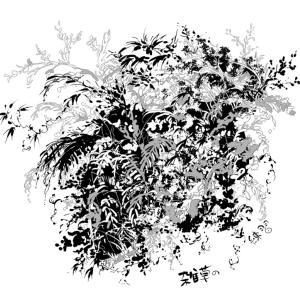 いつも雑草を適当に描くので とりあえず「シダ」を 描けるように練習してます