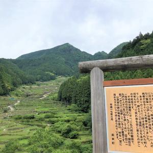 のどかな棚田をぶらり散策~四谷の千枚田 <愛知県・新城市>