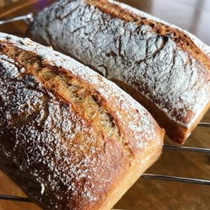 パンに弄ばれる広報担当