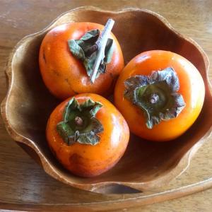 柿を奈落の底へ突き落としてから救済する物語