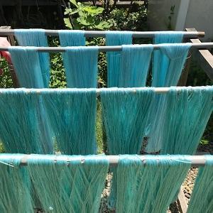 草木染め・藍の生葉染色で絹の経糸を染めました