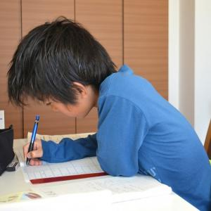 得意な教科ばかり勉強しています。