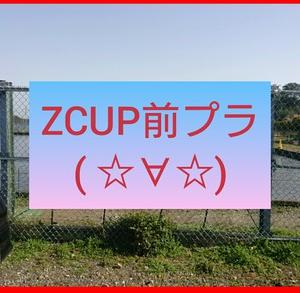 3/21ZCUPプラだよ(^^♪