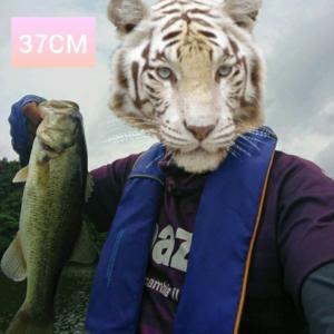 7/23亀山湖でレンタルボートだよ( ☆∀☆)