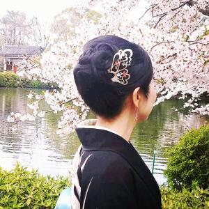 桜満開の京都で…銀製かんざしアーティストHANAE
