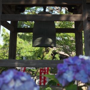 朝の遊行寺