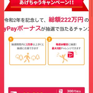 PayPayポイントが貰える!!『WalkCoinで総額222万円相当あげちゃうキャンペーン』に参戦しました〓