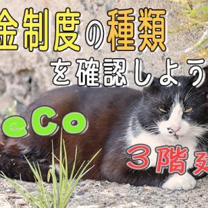 【入門編】iDeCoをはじめる前に、年金制度の種類を確認しよう!!