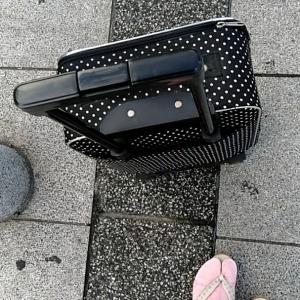 京都ひとり旅 1