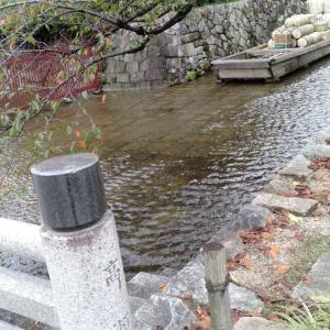 京都ひとり旅 5