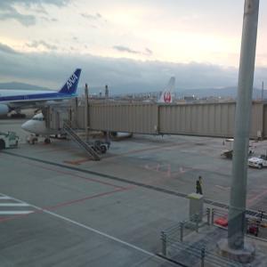 JAL/日本航空 搭乗レビュー JL2050便 福岡空港⇒大阪国際空港