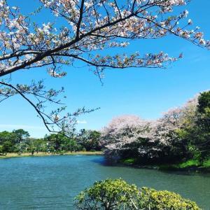 三渓園での佳き日に(1)