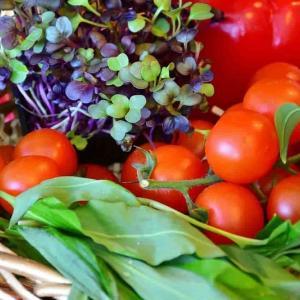 野菜ジュースはなぜ体に悪いとか、栄養がないとか言われているのか